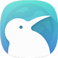 KiwiBrowser浏览器