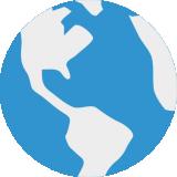 VN浏览器